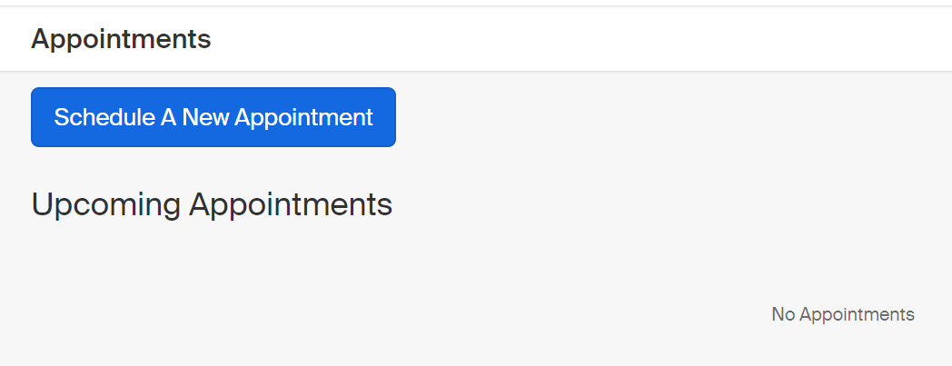 "Screenshot of the ""Appointments"" page. Click the button toward the top labelled ""Schedule A New Appointment"""